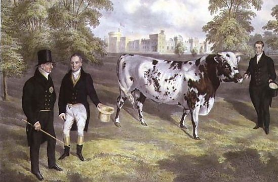 Sir-Charles-Morgan-Presenting-King-William-IV-With-A-Shorthorn-Bull-At-Tredegar-Castle,-Monmouth,-1836